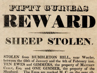 Reward Poster, Theft from Humbleton Hill, Wooler 1819